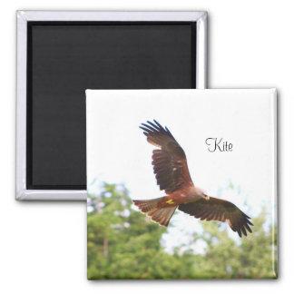 Kite in flight..... magnet