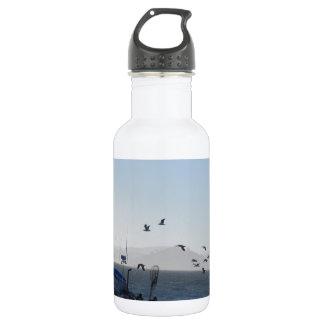 Kite on the beach 532 ml water bottle