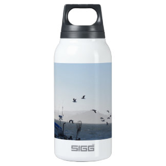 Kite on the beach insulated water bottle