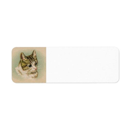 Kitten address label