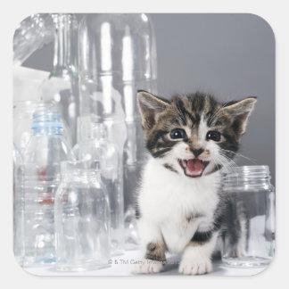 Kitten amongst recycled bottles and jars square sticker