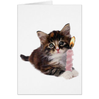 Kitten and one pink birthday candle greeting card