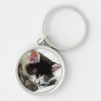 Kitten asleep on White Comforter Silver-Colored Round Key Ring