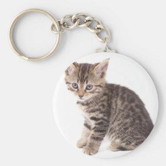 kitten basic round button key ring