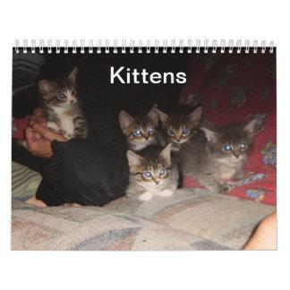 Kitten Calendar