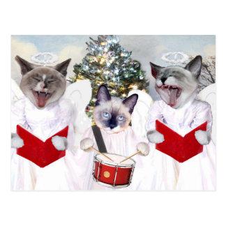 Kitten Carol Holiday Postcard