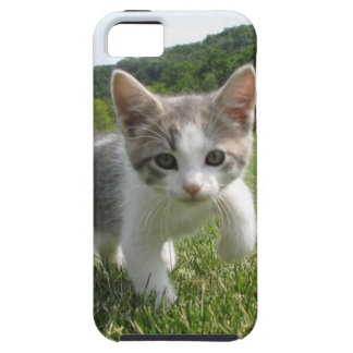 kitten case for the iPhone 5