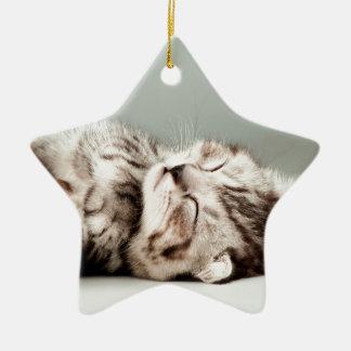 kitten, cat, cute tabby cat, cute cats, cute kitte ceramic ornament