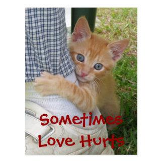 Kitten Dax Love Hurts Postcard