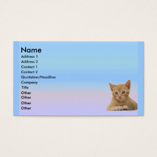 Kitten Dax Profile Card