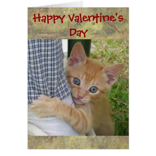 Kitten Dax Valentine Card