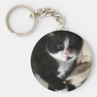 Kitten decal basic round button key ring
