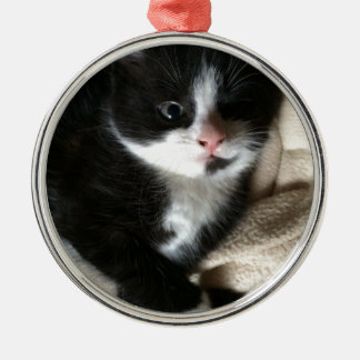 Kitten decal Silver-Colored round decoration