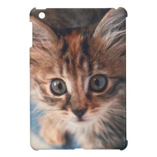Kitten Eyes iPad Mini Covers