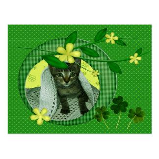 Kitten, Flowers, Shamrocks & Green Polka Dots Postcard