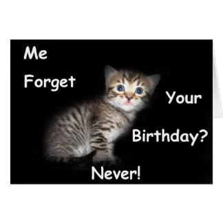Kitten Forgotten Birthday Card