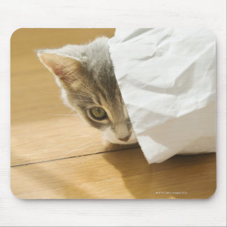 Kitten hiding in paper bag mouse pad