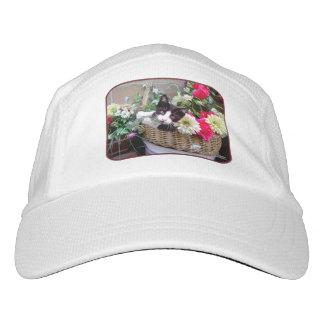 Kitten in a Basket Hat