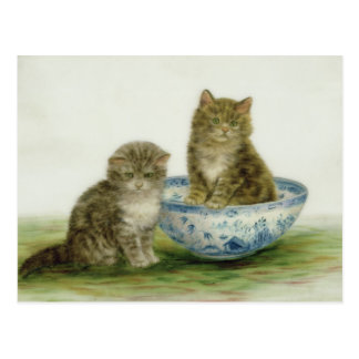 Kitten in a Blue China Bowl Postcard