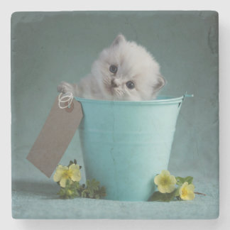 Kitten in a Bucket Stone Beverage Coaster