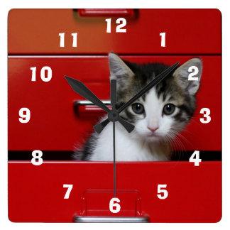 Kitten in a red drawer clocks
