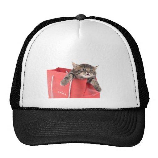 kitten in has bag red mesh hat