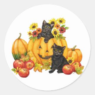 kitten in pumpkin sticker