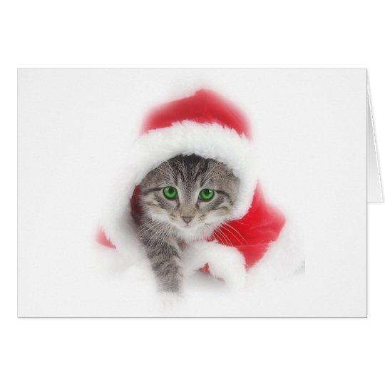 Kitten in Santa hat Card