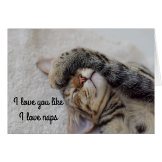 Kitten Love Card