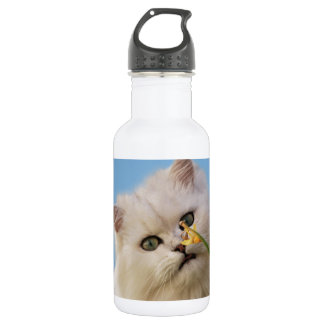 Kitten loving the daffodil 532 ml water bottle