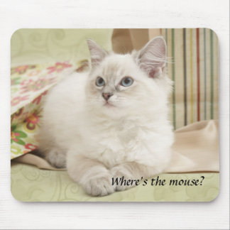 kitten mousemat