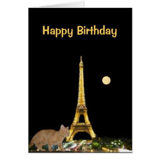 Kitten on the Prowl in the Paris Night Card