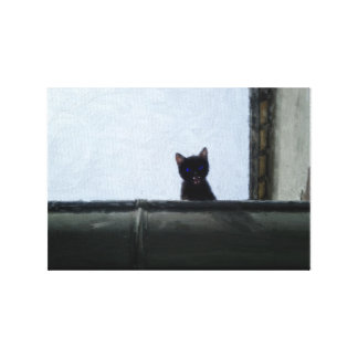 Kitten one roof canvas print
