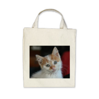 Kitten Organic Grocery Tote Canvas Bags