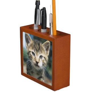 Kitten outdoors desk organisers