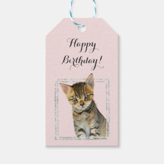 Kitten Painting with Faux Marble Frame Birthday Gift Tags
