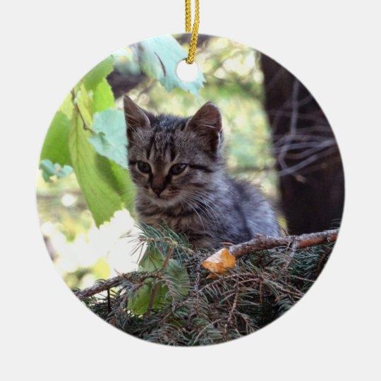 Kitten Photo Baby Cat Circle Ornament