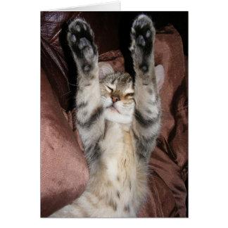 Kitten Power Card
