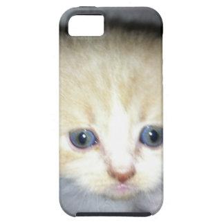 kitten power case for the iPhone 5