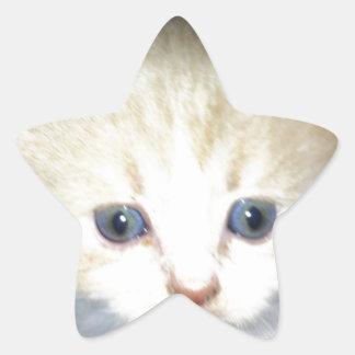 kitten power star sticker