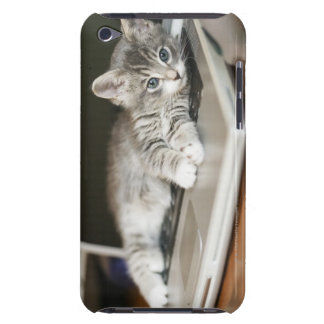 Kitten resting on laptop computer iPod touch cover