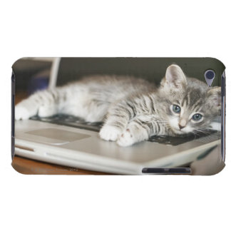 Kitten resting on laptop computer iPod touch covers