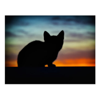 Kitten Silhouette Against Sunset Sky Postcard