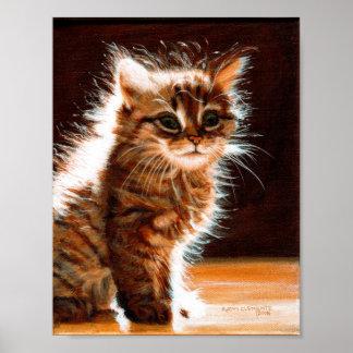 Kitten Sitting in Sun poster
