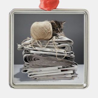 Kitten sitting on pile of newspapers metal ornament
