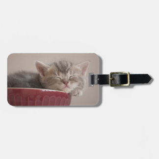 Kitten Sleeping In A Bowl Luggage Tag