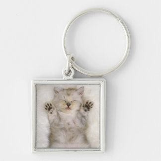 Kitten Sleeping on a White Fluffy Carpet, High Silver-Colored Square Key Ring