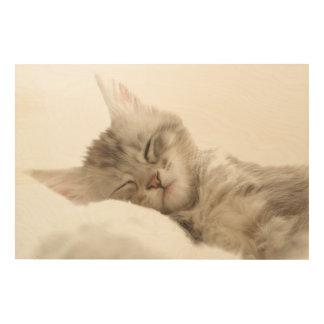 Kitten sleeping wood wall decor