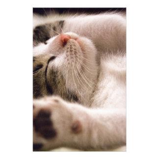 kitten stationery