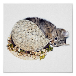 Kitten with Bonnet Poster